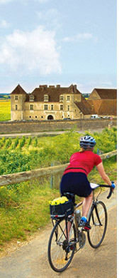 Burgundy biking photo